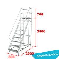 Warehouse Ladder LT-15