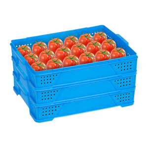 Plastic Crate for Tomatoes Or Other Fruits