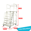 Warehouse Ladder LT-10