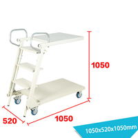 Warehouse Ladder LT-1