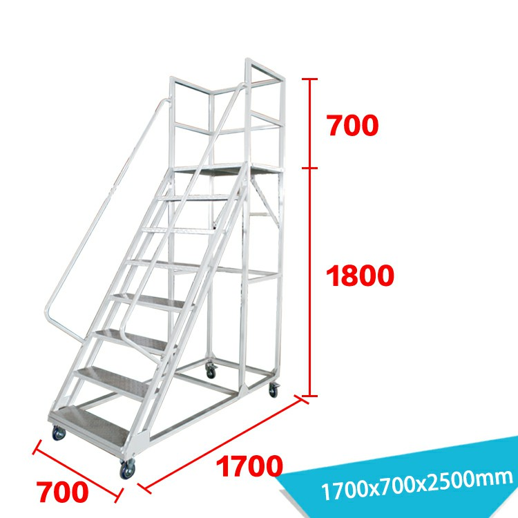 Warehouse Ladder LT-13