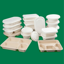 Degradable Eco Friendly Meal Box