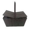 Plastic Rattan Handle Basket